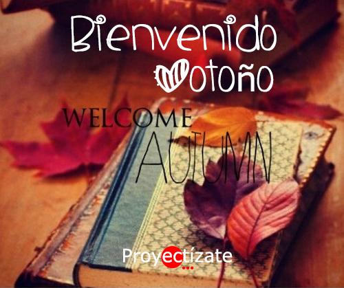 Community manager alcoy ibi elche albaida onteniente murcia social media redes sociales empresa proyectizate internet posicionamiento web otoño